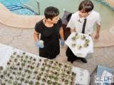 wedding catering in Denia